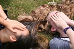 How to massage the scalp for better hair growth